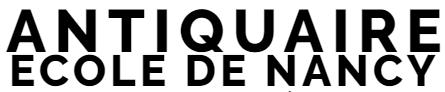 ANTIQUAIRE-ECOLEDENANCY.COM